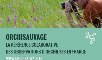Orchisauvage et la COP21