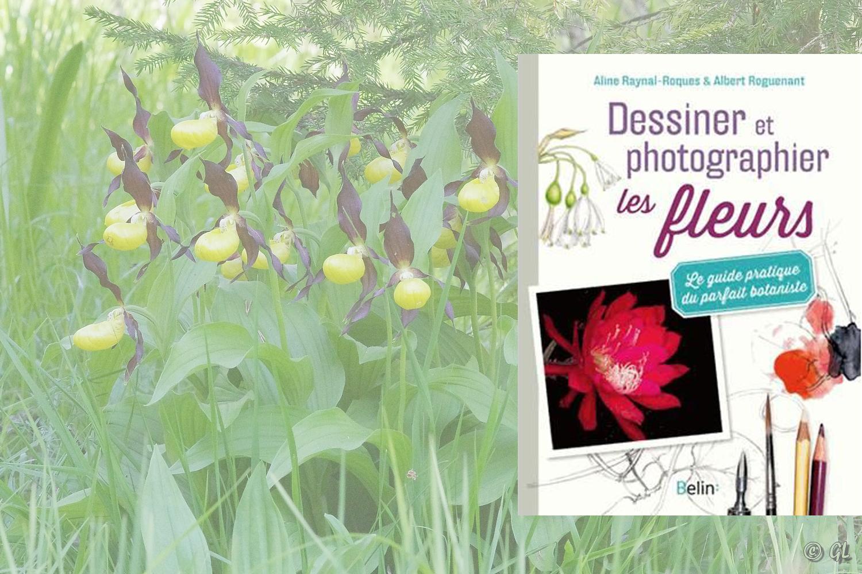 Dessiner et photographier les fleurs, Editions Belin