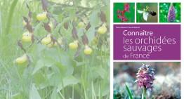 (Re)découvrir les orchidées de France