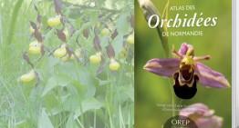Atlas des orchidées de Normandie