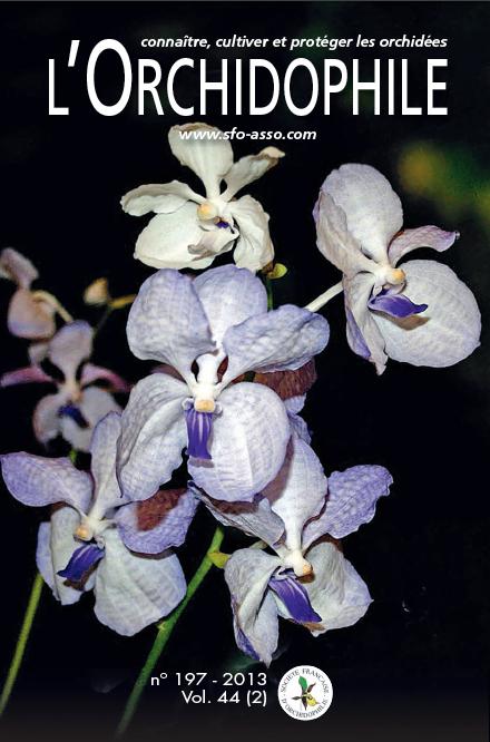 L'Orchidophile, le journal des orchidées numéro 197 vanda coerulea