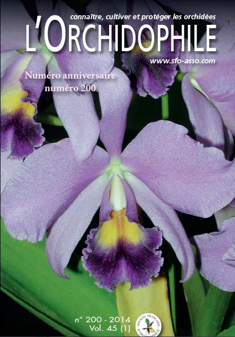 L'Orchidophile n°200, le journal des orchidées, Cattleya