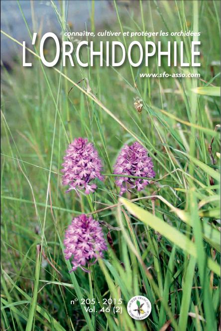 Couverture L'Orchidophile n°205 le journal des orchidées