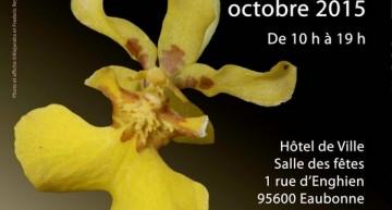 11e Salon des Orchidées à Eaubonne (95)