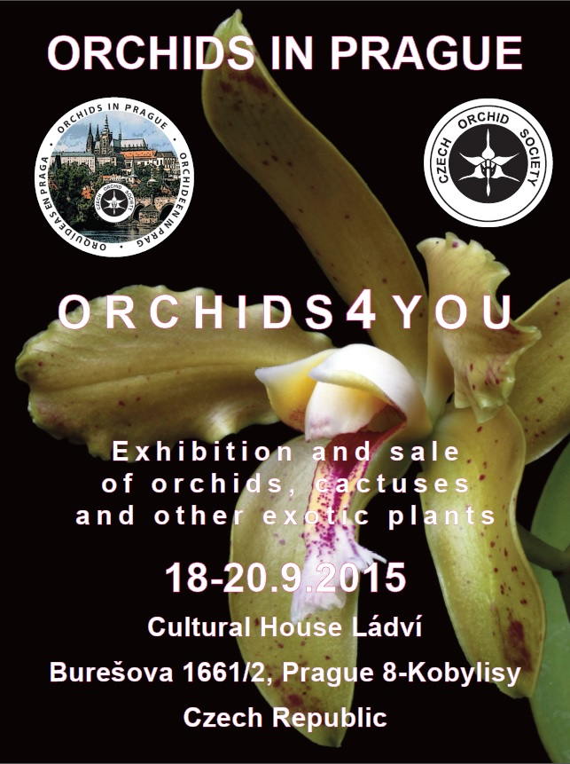 Affiche Orchids In prague 2015
