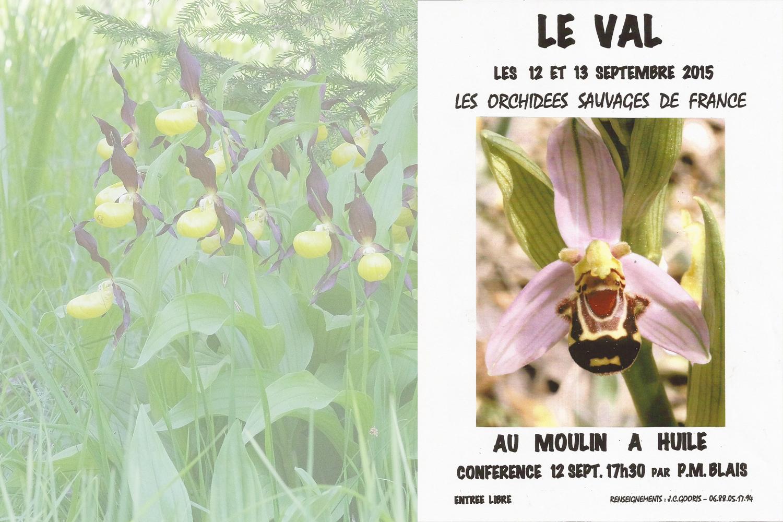 exposition orchidées sauvages de France Le Val