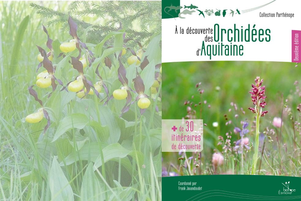 A la découverte des orchidées sauvages d'Aquitaine, Association SFOAquitaine, Association orchidées