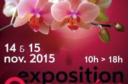 Exposition à Canet-en-Roussillon