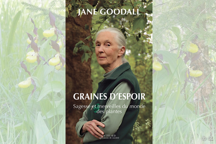Couverture Graines d'Espoir Dr. Jane Goodall Actes Sud, Société Française d'Orchidophilie association orchidées