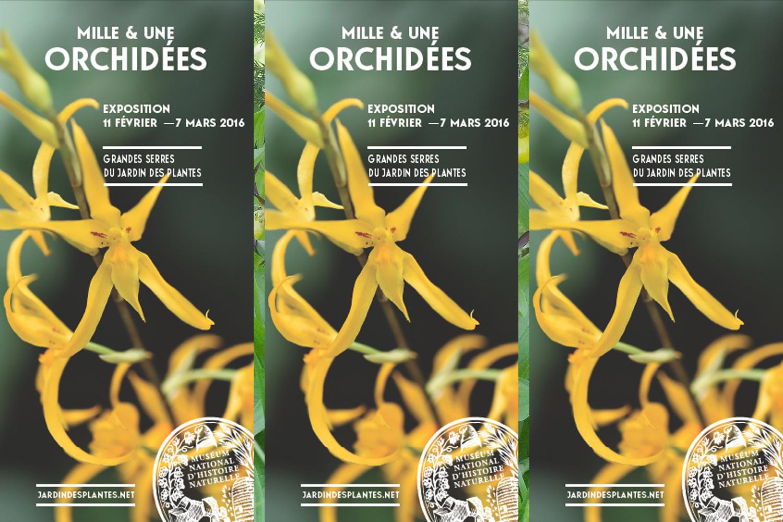 Exposition Orchidées museum 2016