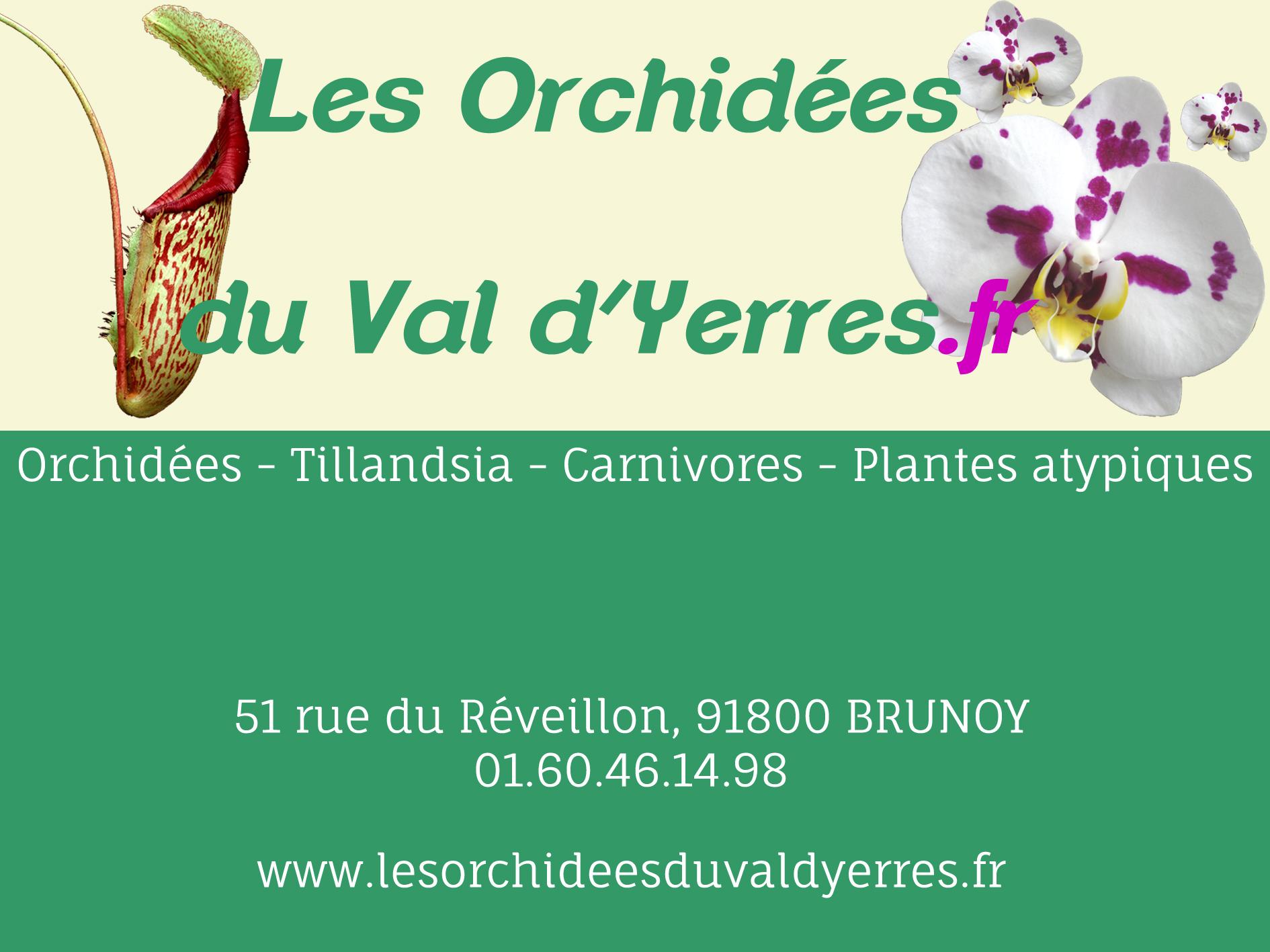 Orchidées du Val d'Yerres, vente d'orchidées rares et originales