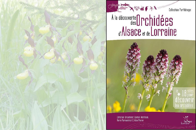 A la découverte des orchidées d'Alsace et de Lorraine, édition Biotope