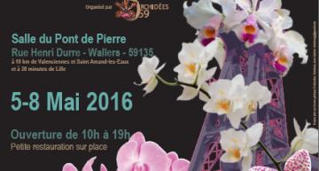 Exposition à Wallers Arenberg du 5 au 8 mai 2016