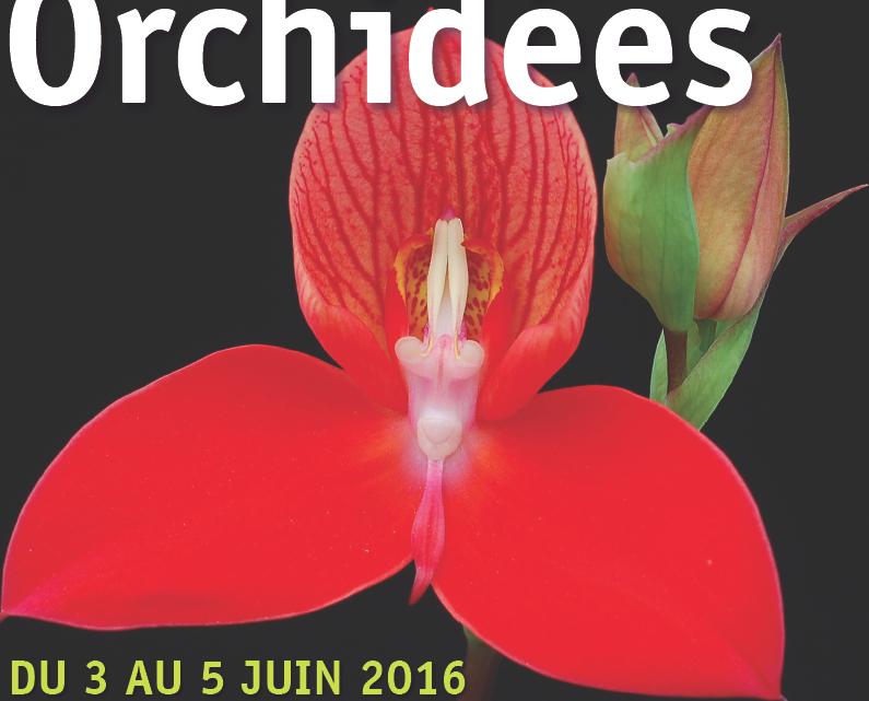 Exposition à l'Abbaye du Moncel (Oise) du 3 au 5 juin 2016