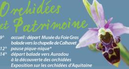 Orchidées et Patrimoine