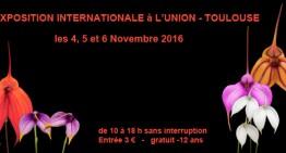 Exposition d'orchidées à Toulouse
