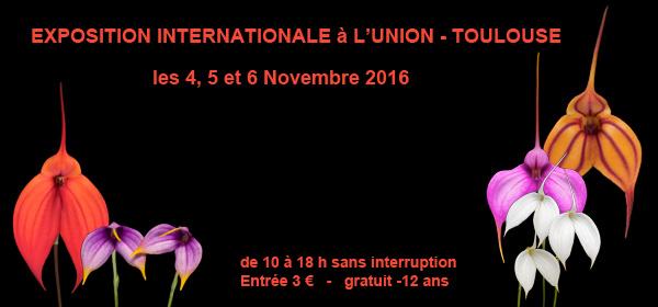 Exposition UNION 4-6 novembre 2016 orchidées
