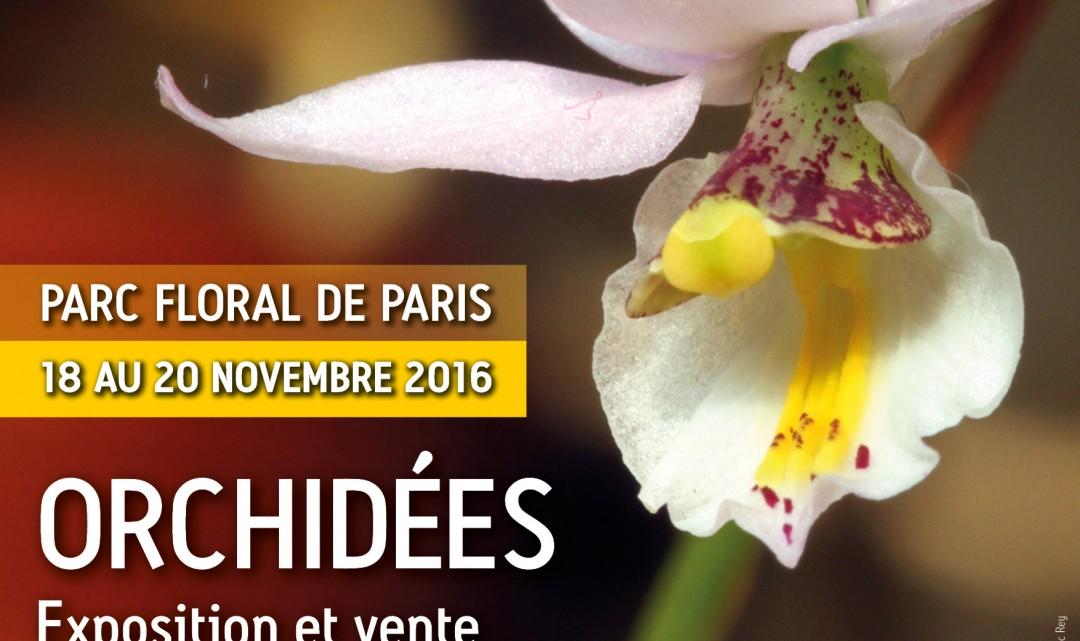 Exposition au Parc Floral de Vincennes