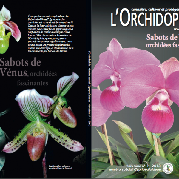 Hors Série Paphiospedilums Phragmipediums mexipedium SFO association orchidées amateurs professionnels