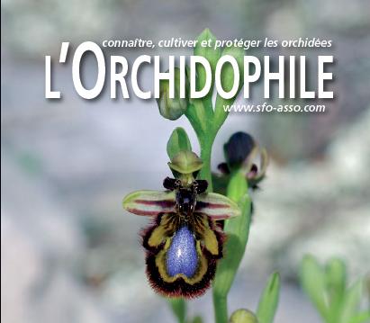 L'Orchidophile, revue n°1 des amateurs d'orchidées en France