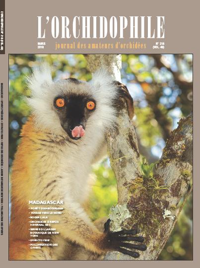 Couverture Orchidphile mars 2018 Madagascar