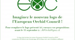 Proposez le prochain logo de l'EOC