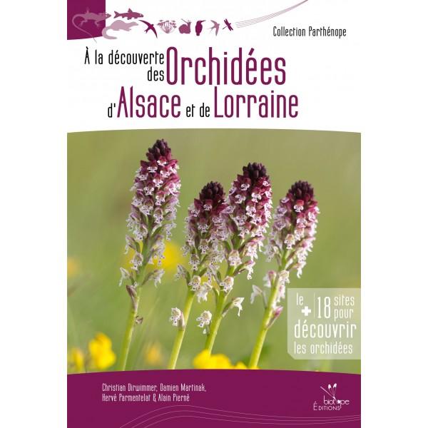 a-la-découverte-des-orchidées-d-alsace-et-de-lorraine