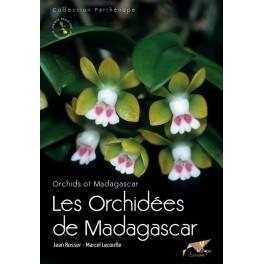 les-orchidees-de-madagascar-orchids-of-madagascar