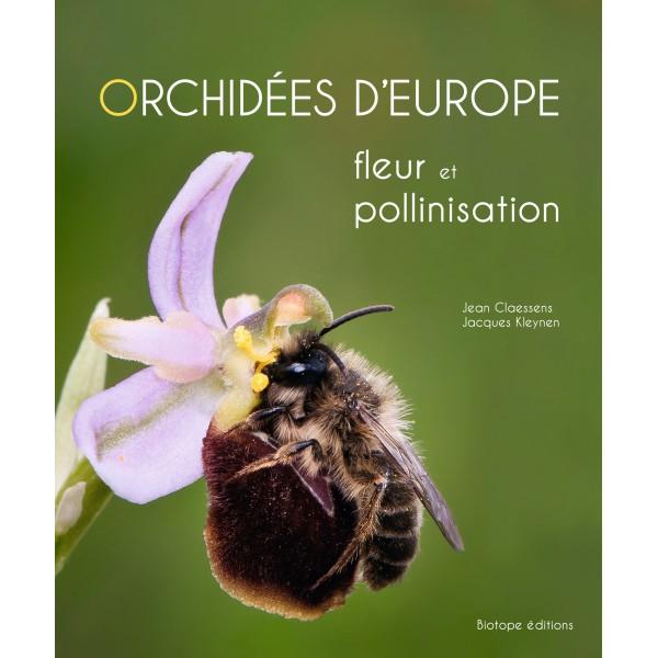 orchidées-d-europe-fleur-et-pollinisation
