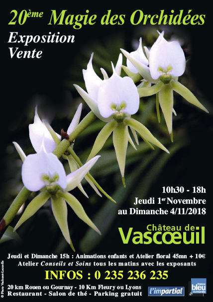Exposition au Château de Vascoeuil