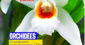 Exposition d'orchidées à Bordeaux