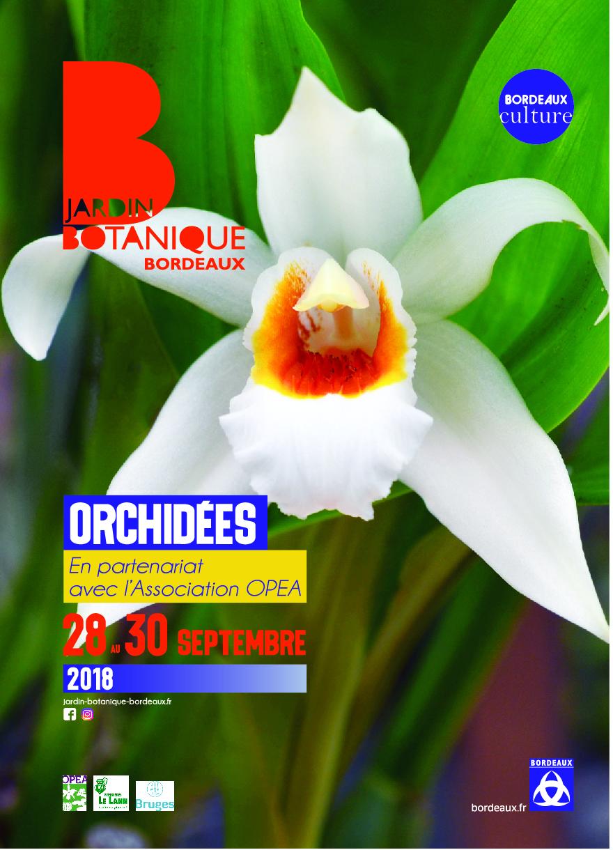 Exposition orchidées à Bordeaux