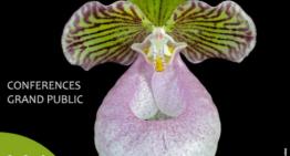 Exposition d'orchidées à L'Union (Toulouse)