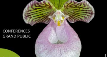 Exposition d'orchidées à L'Union (Toulouse) – nov. 2018