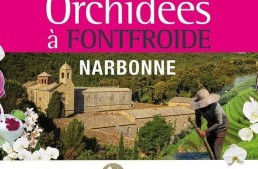 Exposition d'orchidées à l'Abbaye de Fontfroide