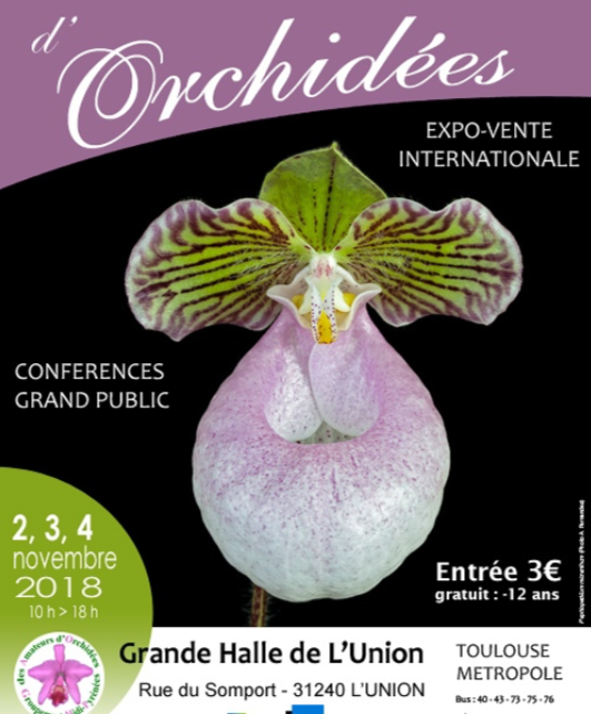 Exposition d'orchidées à L'Union (Toulouse)