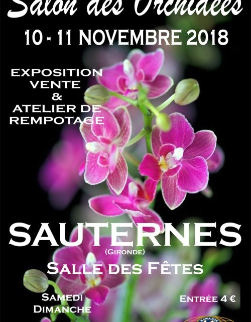 Exposition d'orchidées à Sauternes
