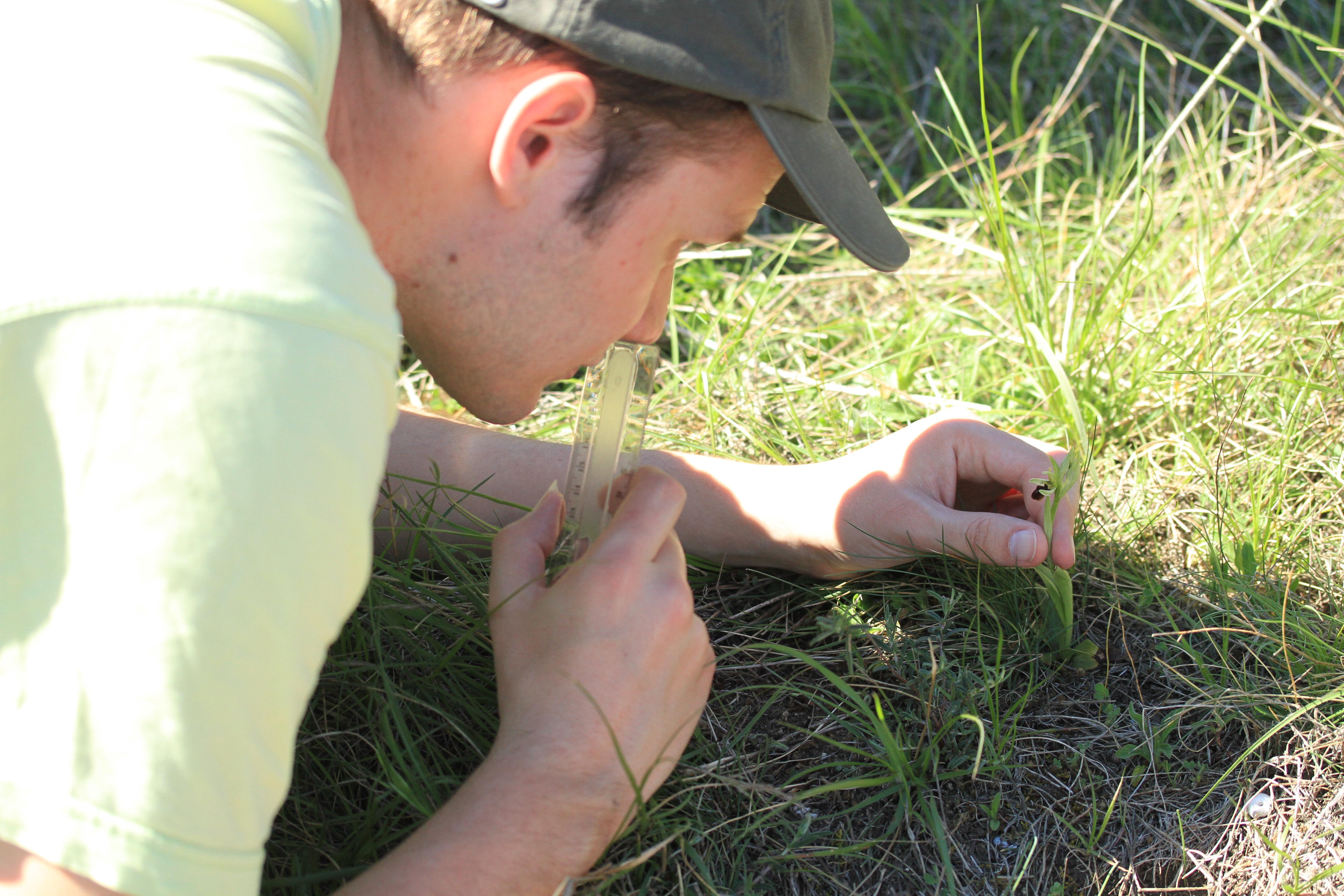 Prospection sur le terrain (c) Ghislain Constans