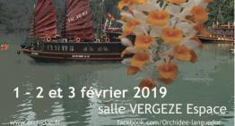 Exposition d'orchidées à Vergèze (30)