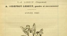 L'Orchidophile, un héritage historique