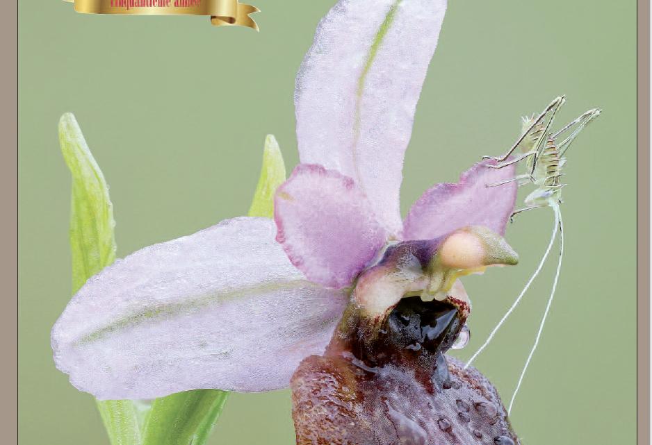 Cédric Rajadel, lauréat du concours photo pour la couverture de L'Orchidophile