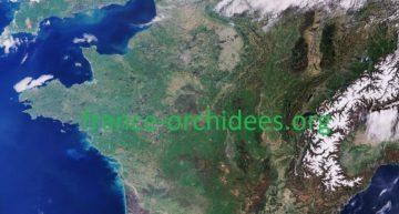 Bienvenue sur le nouveau site de la Fédération France Orchidées !