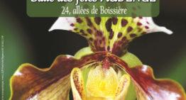 Exposition d'orchidées – Audenge mai-juin 2019