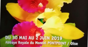 Exposition abbaye royale du Moncel 2019