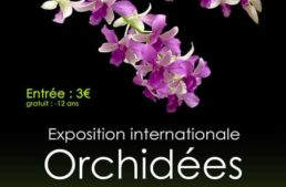 Exposition internationale d'orchidée – L'Union 2020