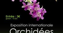 Exposition internationale d'orchidée – L'Union 2020