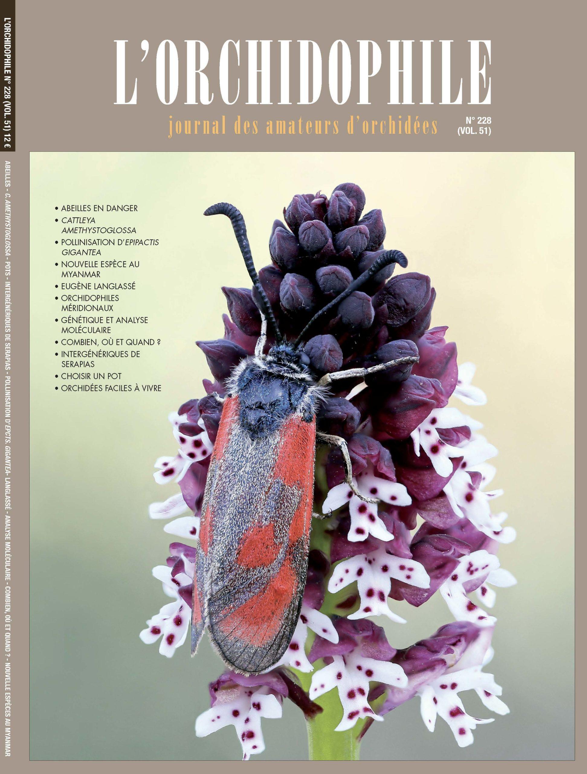 L'Orchidophile n°228