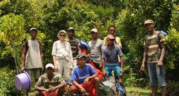 Des nouvelles de la forêt d'Ambodiriana à Madagascar