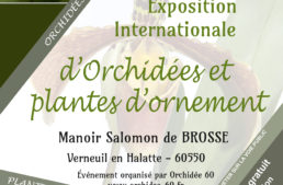 Exposition internationale Orchidées – Angulocaste du 22 au 24 Octobre 2021