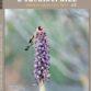 Une étude du commerce des orchidées et de ses conséquences en termes de conservation